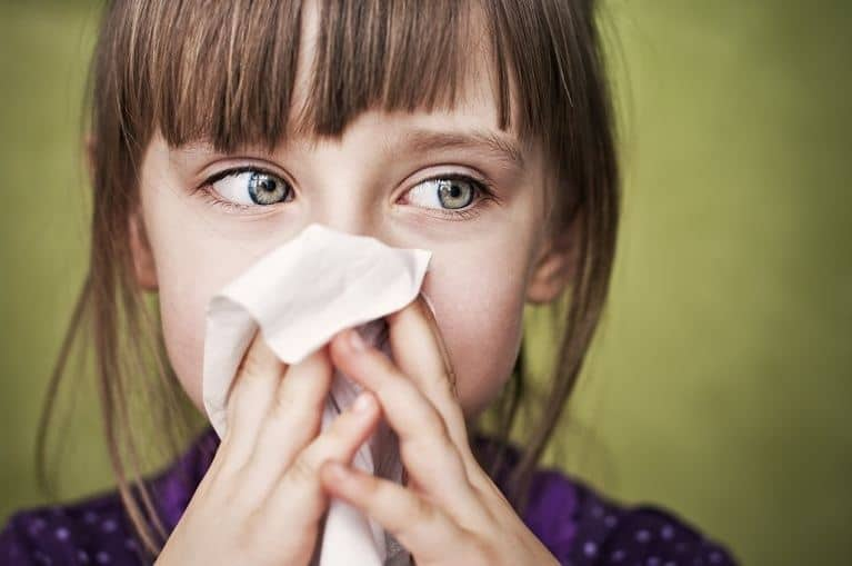 Do Air Purifiers Really Work for Reducing Allergies?