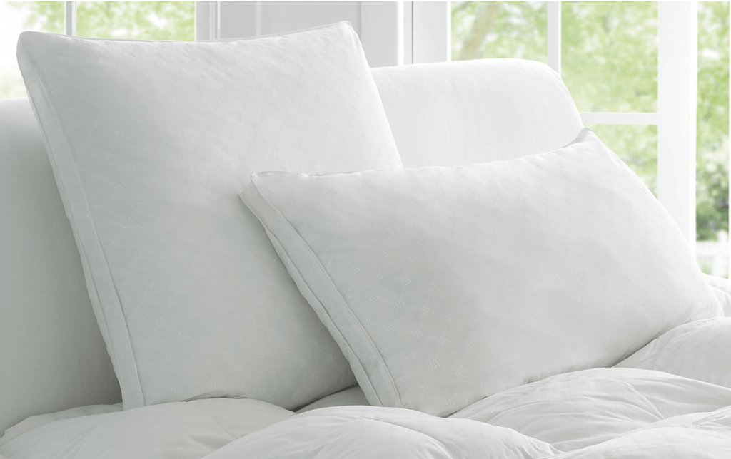Down Pillow Cleaning