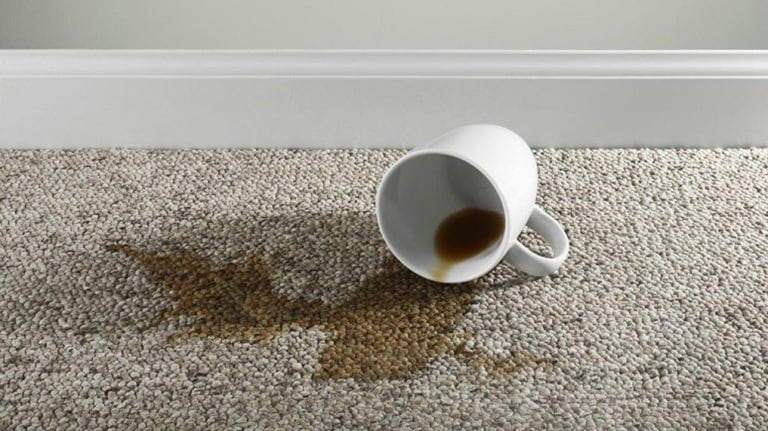 How To Get Coffee Stains Out Of Your Carpet: Step By Step Guide