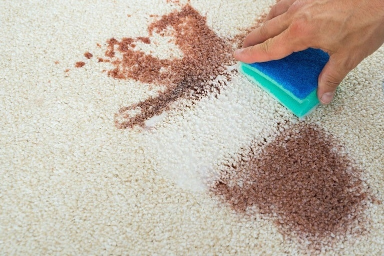 4 Easy Ways To Get Blood Out Of Carpet: (Clean And Remove Stains)