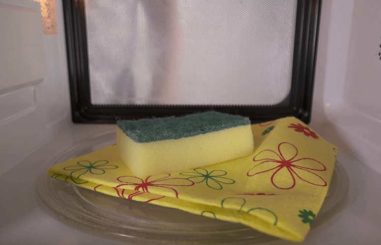 cleaning kitchen sponge with microwave