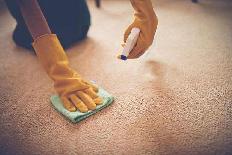 Stains out of Carpets